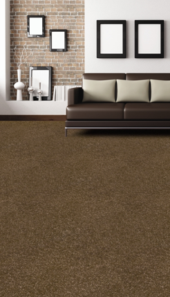 Polyester Carpet flooring in Auckland, NZ
